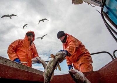 Pompowanie wody z odpadami rybnymi pompami UNIQA CHOPPER